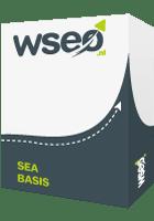 SEA-AdWords basis